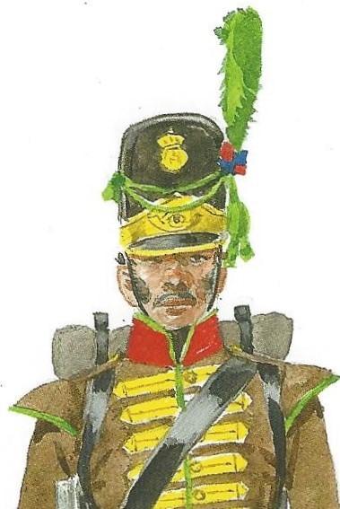 Figure 1, Portuguese Caçador. Painting by Herbert Knötel